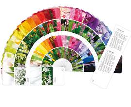 Le nuancier des fleurs par la couleur